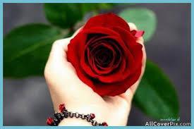 beautiful flowers heart dps pics
