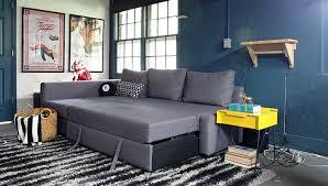 an ikea friheten sofa comes to live in