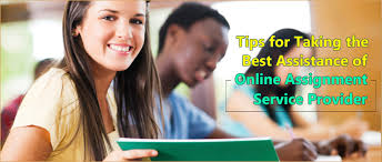 tips for taking the support of online assignment service providers custom assignment help