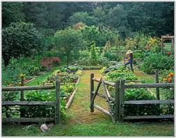 Small Picture Vegetable Garden Design Pictures Markcastroco