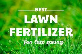Best Lawn Fertilizer For Late Spring And How To Apply It