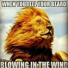 Beard Quotes Adorable Top 48 Best Funny Beard Memes Bearded Humor And Quotes