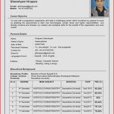 new format of cv resume guidelines new resume format resume cv davecarter me