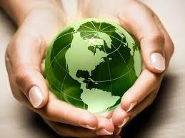 world environmental issues essay environmental issues in the  world environmental issues essay environmental issues in the world essay edu essay