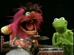 animal muppet drums. Plain Animal Animal Compilation With Muppet Drums