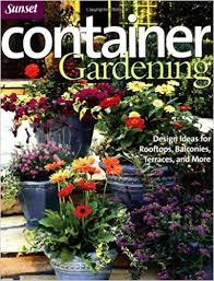 Container Garden Design Unique Design Ideas