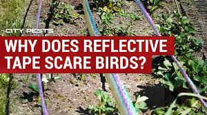 why does reflective tape scare birds