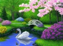 Small Picture 56 best zwanen images on Pinterest Beautiful swan Beautiful