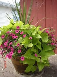 Small Picture 1134 best Planter Urn Arrangements images on Pinterest Pots