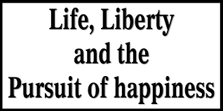 vid decals bumper stickers life liberty and pursuit of  vid decals bumper stickers life liberty and pursuit of happiness bumper sticker