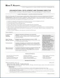 Job Resume Example Elegant Work Resume Examples Elegant Resume For