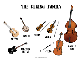 Image Result For Orchestra Instrument Seating Chart