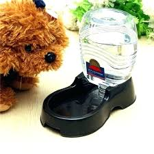 electric cat water bowl electric dog water bowl dog water fountain bowl radar sensing cat water fountain electric dog water electric cat water dish