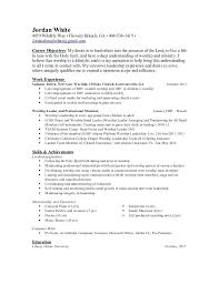 Sample Ministry Resume Youth Resume Examples Youth Ministry Resume
