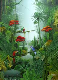 tropical rainforest wallpaper phone wallpaper jungle art by on celebrate national rain forest week of phone