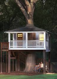 tree house plans for one tree. Photograph By Marc Mauldin Tree House Plans For One