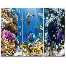 Barrier Reef Coat Rack Coral Reef Wall Art Wayfair 66