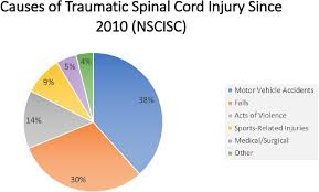 Spinal Cord Injury Chart Economic Impact Of Traumatic Spinal Cord Injuries In The