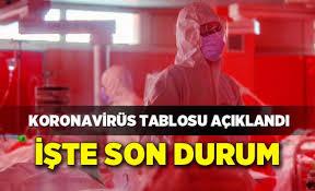 Diğer ülkeler gibi hızlı bir şekilde tüm ülkeye yayılan koronavirüs salgını mayıs ayında alınan tedbirler ve vatandaşların 'evde kal' çağrılarına uymasıyla kontrol altına alındı. 31 Mayis Koronavirus Tablosu