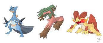 Type swapped final evolution of gen 3 starter Pokemon!: pokemon