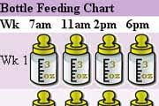 Baby Bottle Feeding Chart Baby Toddler Bottle Feeding And Routines