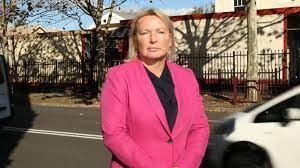 Labor MP Lynda Voltz reveals 'spent conviction' to shadow cabinet | Albany  Advertiser