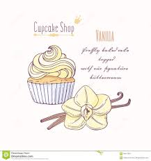 Hand Drawn Cupcake With Doodle Buttercream For Pastry Shop Menu