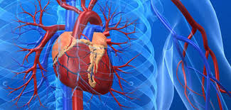 heart surgery pain relief