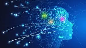Descubren un «tesoro» de genes relacionados con la inteligencia humana