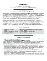 Executive Director Resume Samples Executive Director Resume Template ...