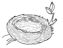 Empty bird nest clip art coloring pages hicoloringpages