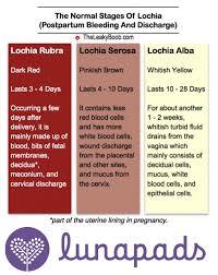 Lochia The Leaky B B