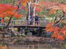 basic japanese garden structures