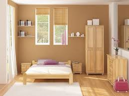 paint colors for low light roomsWarm Colors For Bedroom Walls  MonclerFactoryOutletscom