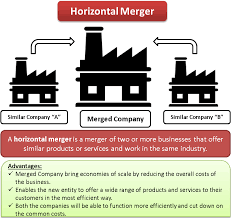 Vertical Merger Example Horizontal Merger Efinancemanagement Com