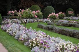 Small Picture Rose Garden Design Ideas Lawn Amp Garden Rose Garden Design Ideas