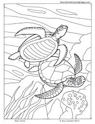 Small Picture Printable Ocean Animals Coloring Pages Animal Coloring Pages for