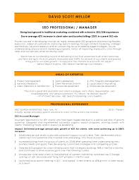 Seo Consultant Resume Free Resume Example And Writing Download