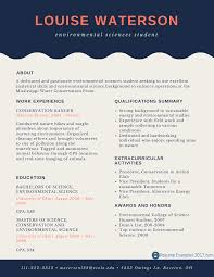 Entryl Resume Examples For College Students Management Objective