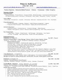 Digital Media Producer Sample Resume Adorable Digital Media Producer Resume Sample Awesome Best Digital Media