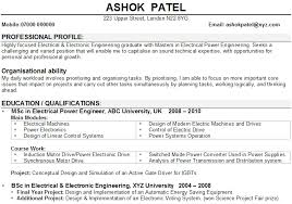 Resume Examples Profile For Objective Intended Statement    Cool     Dayjob