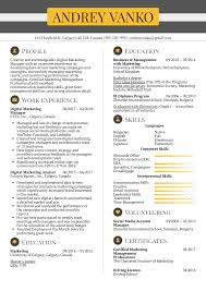 Creative Marketing Resume Resume Examples By Real People Digital Marketing Manager