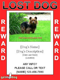 Lost Pet Flyer Maker Interesting Missing Person Template Lost Cat Flyer Word Free Flyers Poster App L