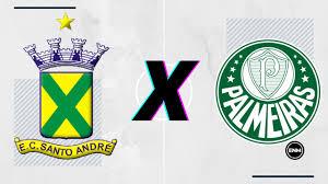 Santo André x Palmeiras: prováveis escalações, desfalques, onde assistir e  opiniões - Esporte News Mundo