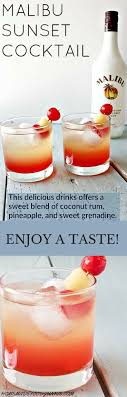 Best 25 Rum Mixed Drinks Ideas On Pinterest  Easy Mixed Drinks Party Cocktails On A Budget