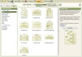 how do family trees work family tree maker 2011 deluxe australian and new zealand version