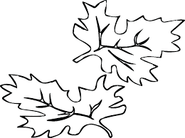 pumpkin leaves coloring pages page maple leaf sheet and