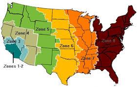 13 Discriminative Usps Postal Zone Chart