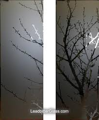 shadows of nature tree design bespoke etched glass panels delivered to all areas of edinburgh