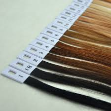 100 Human Hair Color Ring For All Kinds Of Hair Extensions Chart For Tape Tape Extensions Fashionable Hair Accessories Fashionable Hair Clips From